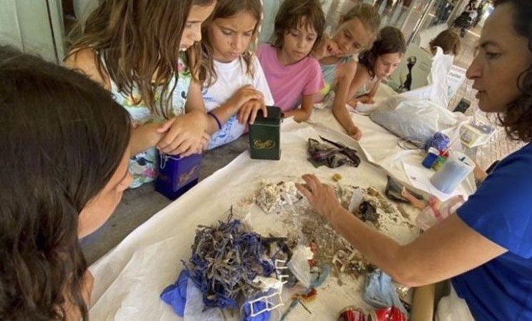 educacion-medioambiental-mares