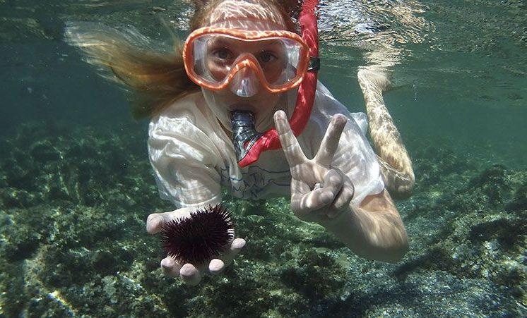 educacion-medioambiental-ocean