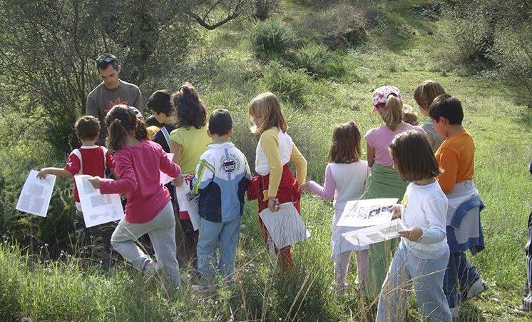 educacion-medioambiental-paseo